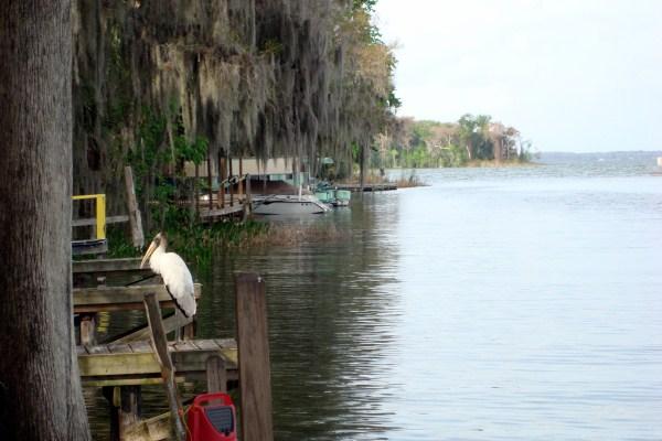 Leesburge Florida (600 x 400)