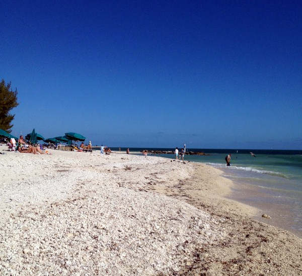 fort zachary beach 2012 (600 x 549)