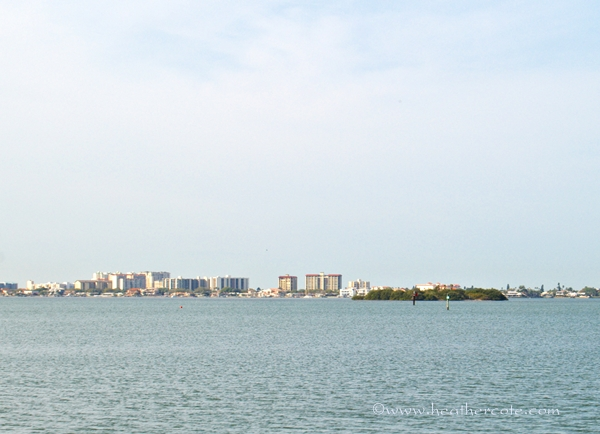 clearwater skyline.2013