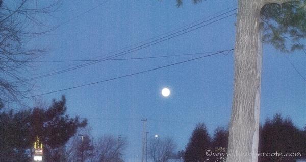 blue moon...2013...