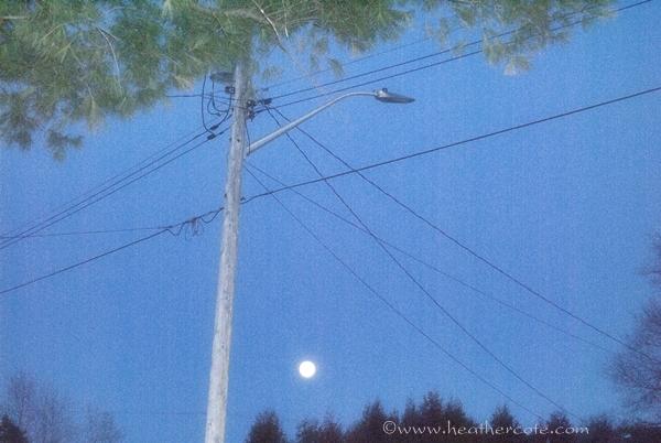 blue moon3...2013.....c