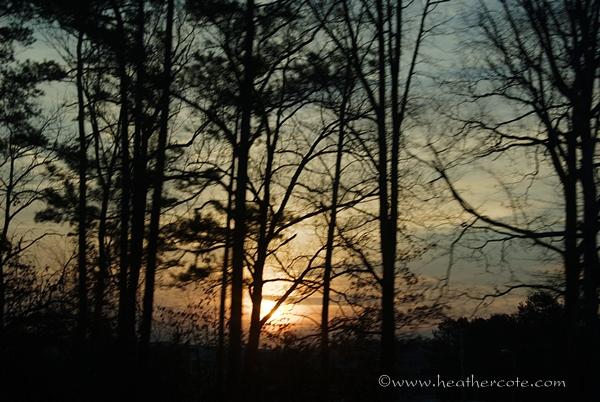 sunrise.2013