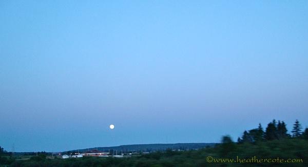 moon.2010