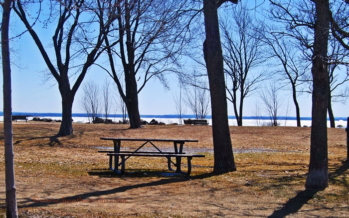 picnic.table.spring.2013