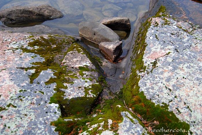 rocks.moss.water.2013