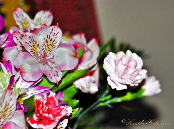 flowers.2.2013