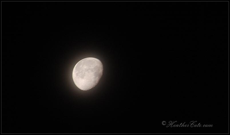 moon...2013