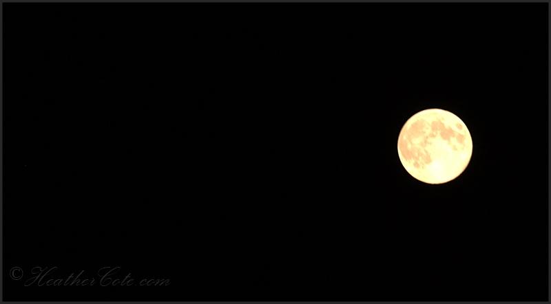 full moon.2013,,.
