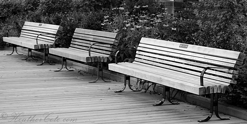 3.benches.2013