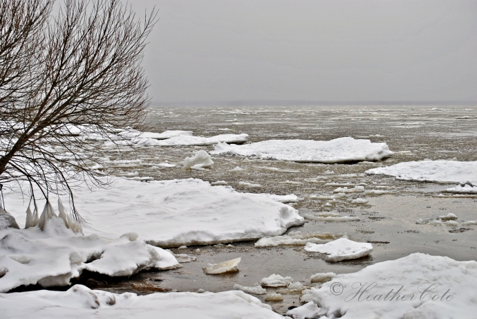 ice.forming.LN.2.2013
