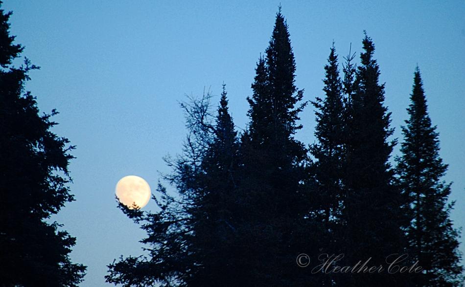 holding.moon.2013
