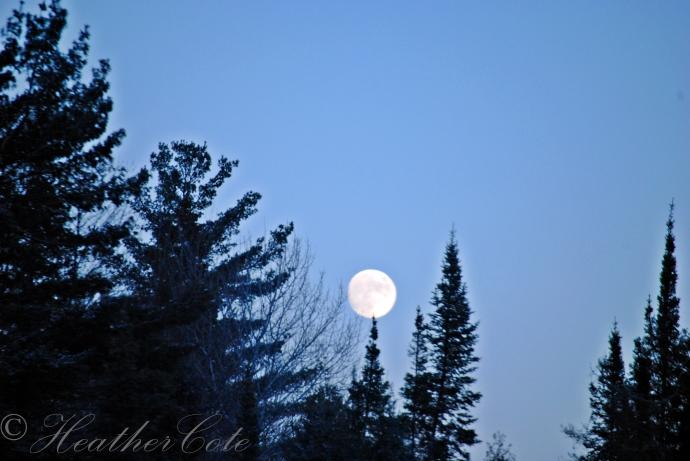 moon.5.2013