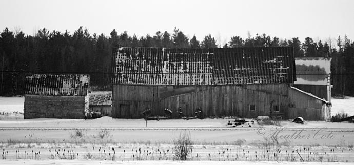 old barn.2014