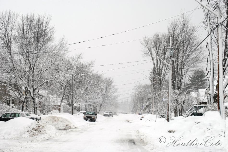 snowy.day.2014.2
