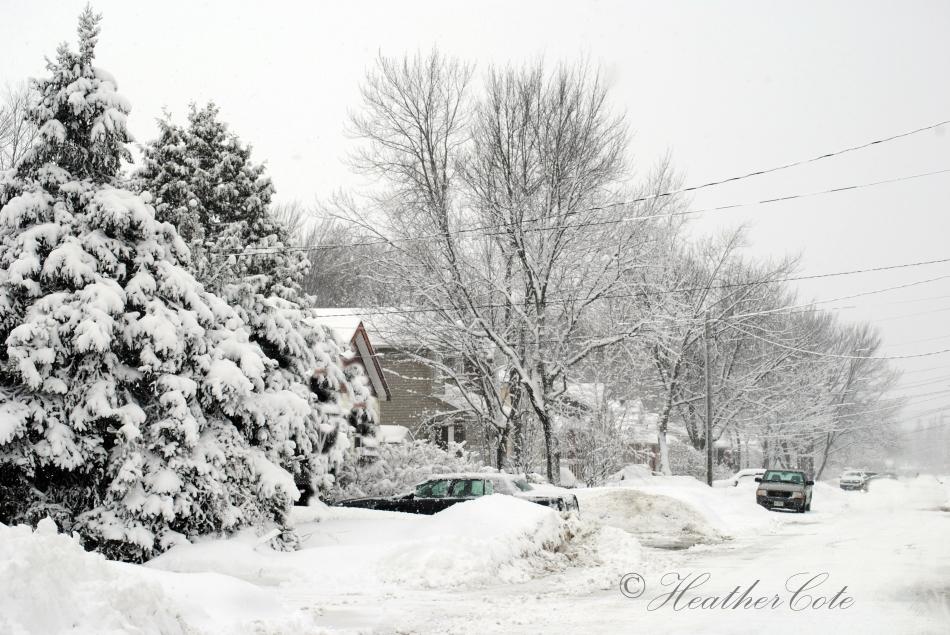 snowy.day.2014.3...