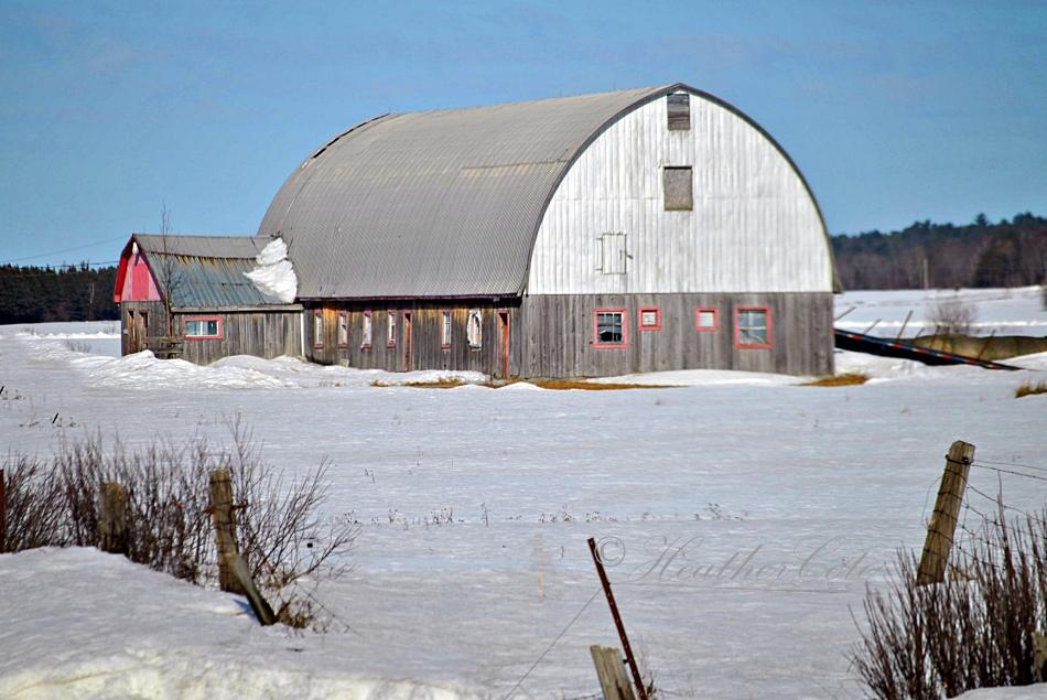 grey.barn.2014...