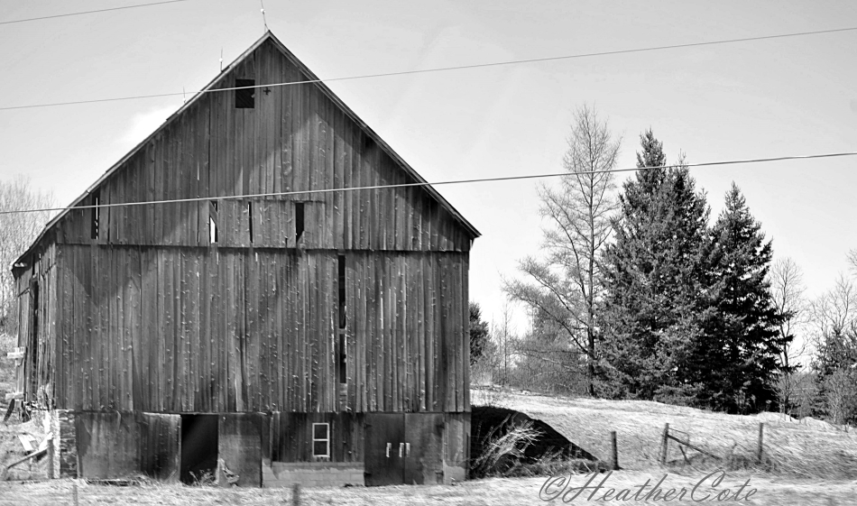 old barn.to rosseau.b.w.2014