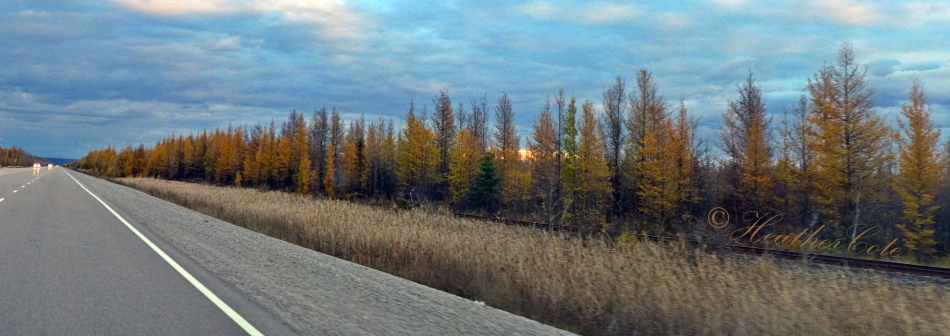 drive.to.sudbury.4.oct.27.2014