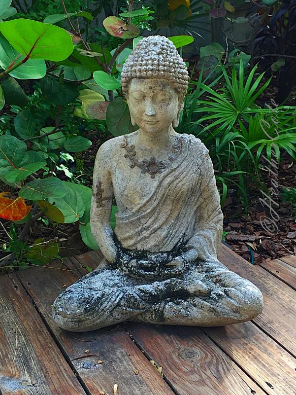 meditation.2016