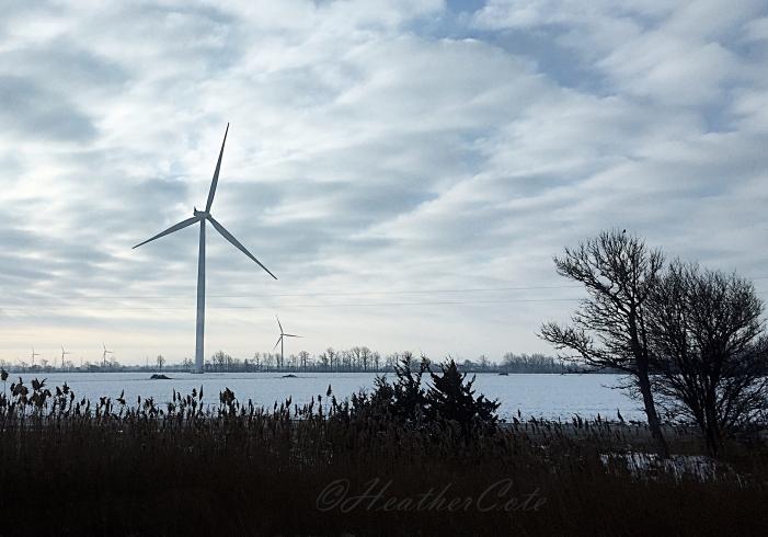 windmill.16