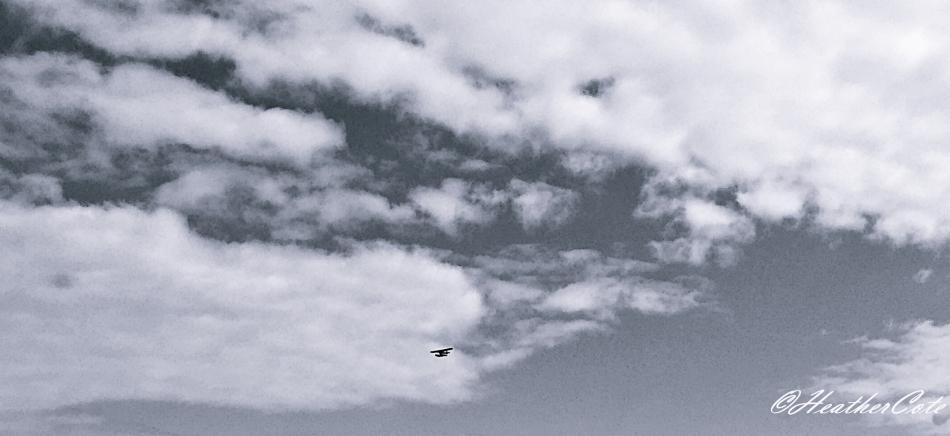 ..b.w.clouds.2016