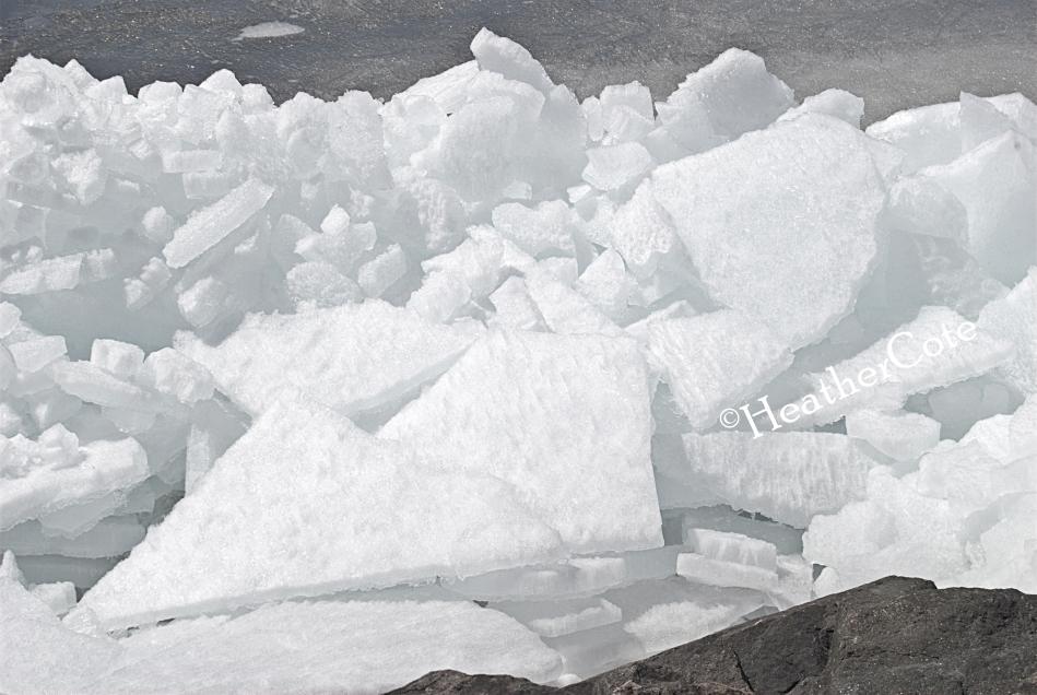 ice.16